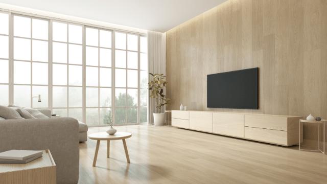 10 Best 75-Inch TVs