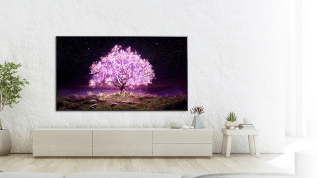8 Best OLED Televisions